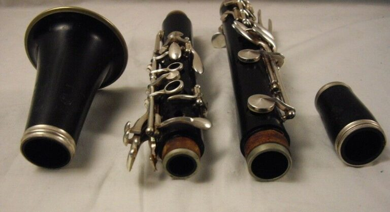 Care Tips and Maintenance Guide for the Clarinet